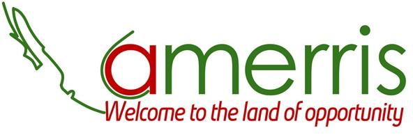 Amerris Consulting, LLC